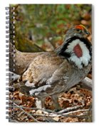 Dusky Grouse Cock Spiral Notebook