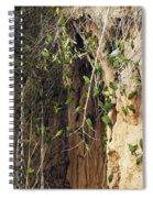 Dusky-headed Parakeets Spiral Notebook
