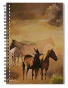 Dust Bowl Spiral Notebook
