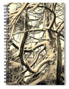 Snow Dusted Limbs Spiral Notebook