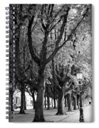 Dutch City Trees - Black And White Spiral Notebook