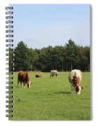 Dutch Landscape With Cows Spiral Notebook