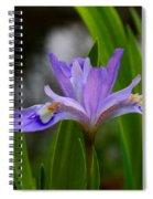 Dwarf Crested Iris Spiral Notebook