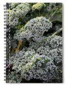 Dwarf Kale Spiral Notebook