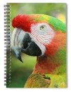 Each New Dawn Spiral Notebook
