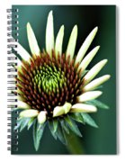 Eager Spiral Notebook