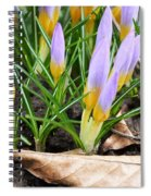 Eager To Sunshine Spiral Notebook