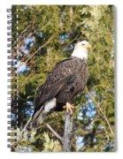 Eagle 1979 Spiral Notebook