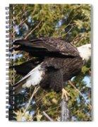 Eagle 1982 Spiral Notebook