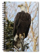Eagle 1991a Spiral Notebook