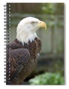 Eagle 2 Spiral Notebook