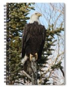Eagle 3 Spiral Notebook