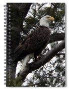 Eagle 9786 Spiral Notebook