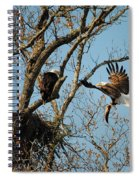 Eagle And The Fish 2 Spiral Notebook