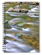 Eagle Creek Oregon Spiral Notebook
