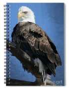 Eagle Eye Spiral Notebook