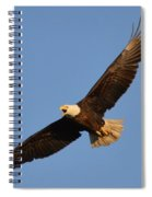 Eagle Flight 5 Spiral Notebook