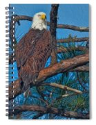 Eagle In Oil Spiral Notebook