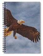 Eagle In The Sky Spiral Notebook