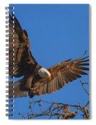 Eagle Landing Spiral Notebook