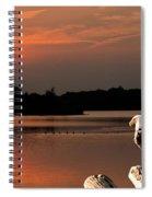 Eagle On Stump Overlooking Water At Sundown Spiral Notebook
