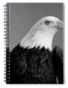 Eagle On Watch Black And White Spiral Notebook