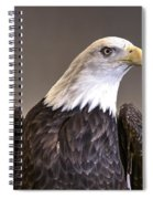 Eagle On Watch Spiral Notebook