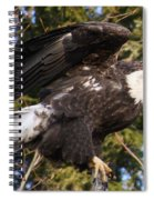 Eagle One Spiral Notebook