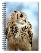 Eagle Owl Spiral Notebook