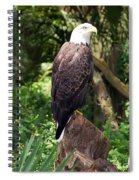 Eagle Portrait Spiral Notebook