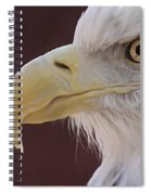 Eagle Portrait Freehand Spiral Notebook