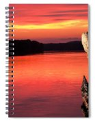 Eagle Preening Early Spiral Notebook