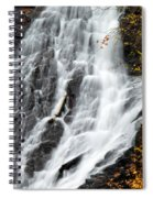 Eagle River Falls Spiral Notebook