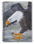 Eagle Study 2 Spiral Notebook