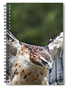 Eagle Wings Spiral Notebook