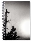 Eagles And Old Tree In Sunset Silhouette Spiral Notebook