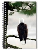 Eagles View  Spiral Notebook