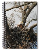 Eagles Watchful Eye 2 Spiral Notebook