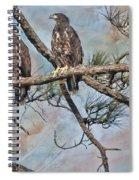 Eaglets In Oil Spiral Notebook