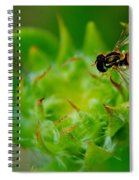 Early Arrival Spiral Notebook