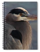 Early Bird Spiral Notebook