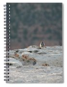 Early Birds On The Edge Spiral Notebook