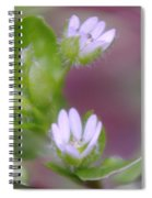 Early Blossoms  Spiral Notebook