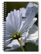 Early Dawns Light On Fall Flowers 02 Spiral Notebook