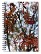 Early Fall Of Rowan Spiral Notebook