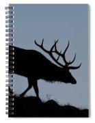 Early Morning Bull Elk Spiral Notebook