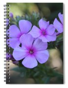 Early Morning Floral Beauty  Spiral Notebook