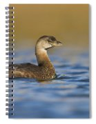 Early Morning Grebe Spiral Notebook