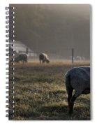 Early Morning Sheep Spiral Notebook