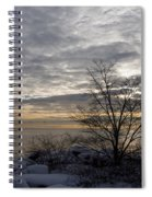 Early Morning Tree Silhouette On Silver Sky Spiral Notebook